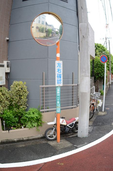 Dsc_6681