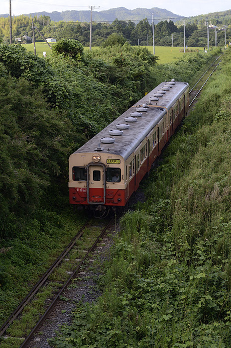 Dsc7916