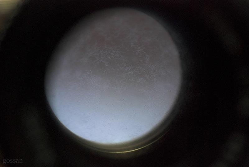 Dsc_350201