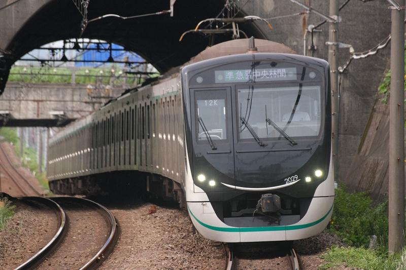 Dsf0252_2020