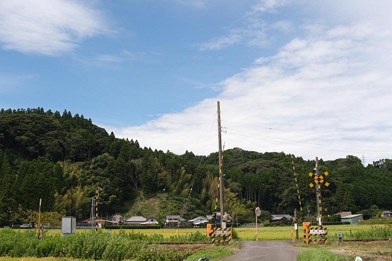 Dsf1142